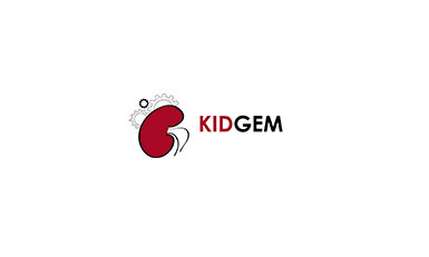 The CRC1140 KIDGEM proposes to analyze genes associated with kidney disease and translate gene function into an understanding of molecular renal physiology.