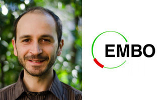 Max Planck group leader honoured for exceptional research and scientific potential by European Molecular Biology Organization (EMBO)