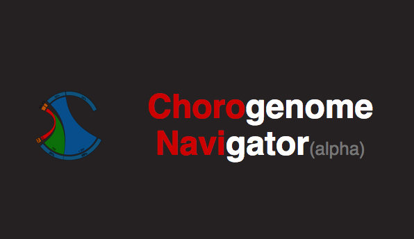 Chorogenome Navigator is a resource that allows you to visualize high resolution Hi-C datasets, along with multiple other genomic features, like histone marks, chromatin states and motifs.