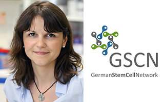 The German Stem Cell Network honours Max Planck group leader with Young Investigator Award