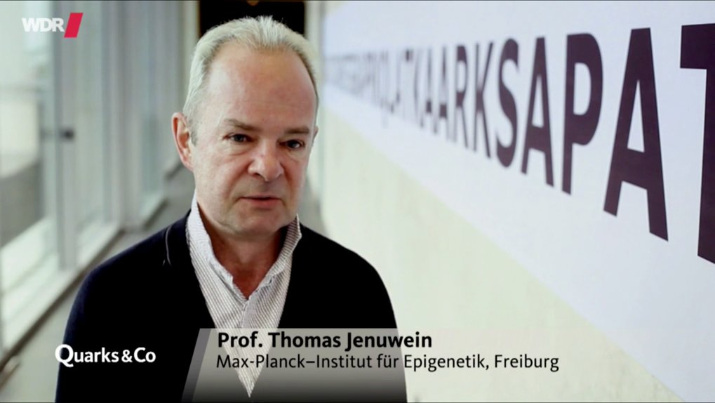 Interview with Thomas Jenuwein on epigenetics in German TV (Quarks&Co, WDR Fernsehen)